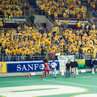 Student Section In Yellow