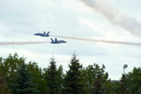 Blue Angels Cross Over Trees