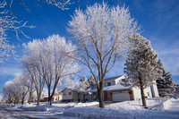 Our Home Under Hoar Frost Trees