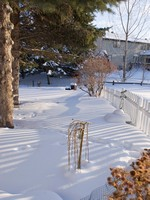 Shadows Contour Snow